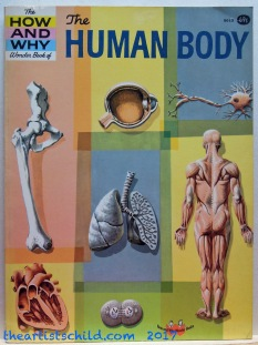 Physiology and Anatomy Book for Children